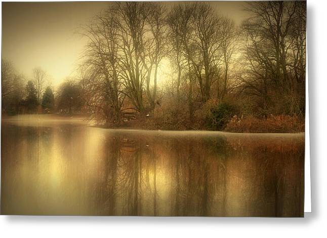 Reflections From The Lake Greeting Card by Jennifer Woodward
