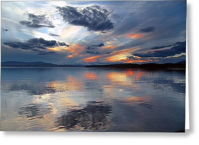Reflections Greeting Card by George Cousins