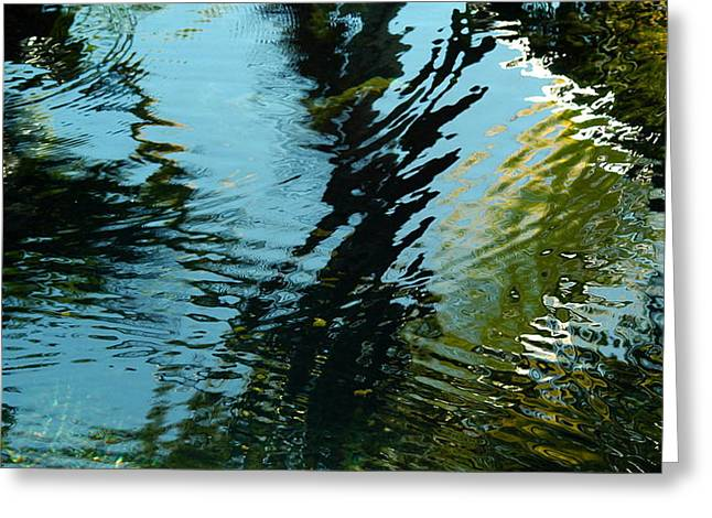 Reflections In A Fishpond Greeting Card by Lehua Pekelo-Stearns