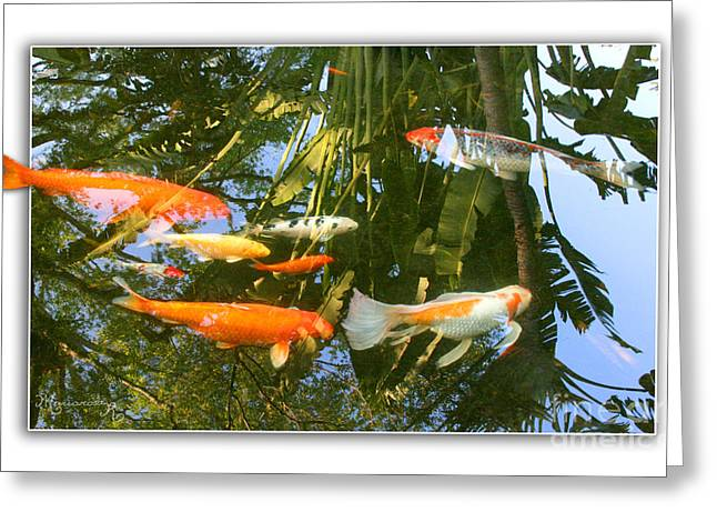Reflections In A Koi Pond Greeting Card by Mariarosa Rockefeller