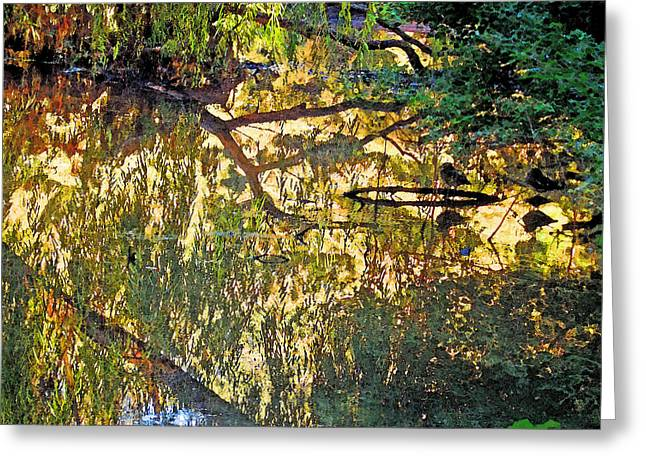Reflections In Bayou Robert Greeting Card