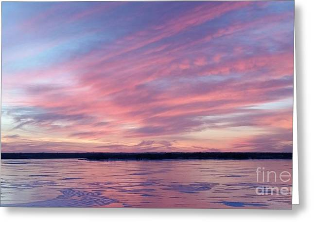 Reflections In Pink Greeting Card by Caryl J Bohn