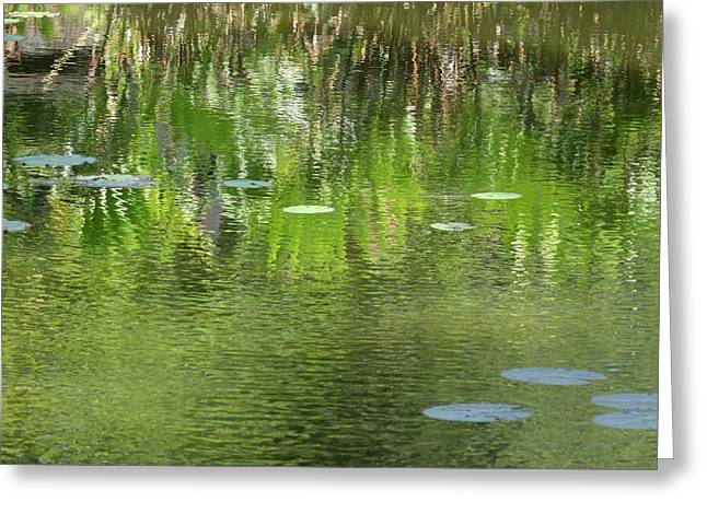 Reflections In Pond At Lunuganga Greeting Card