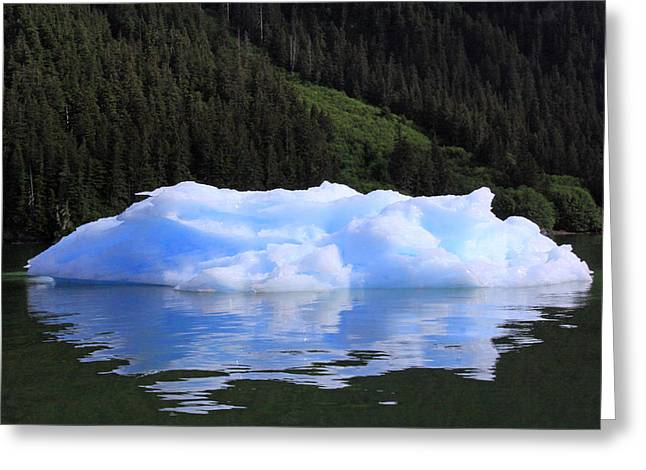 Reflections In The Sea Greeting Card by Shoal Hollingsworth