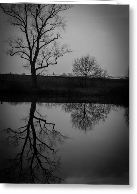 Reflections In Time Greeting Card by Miguel Winterpacht