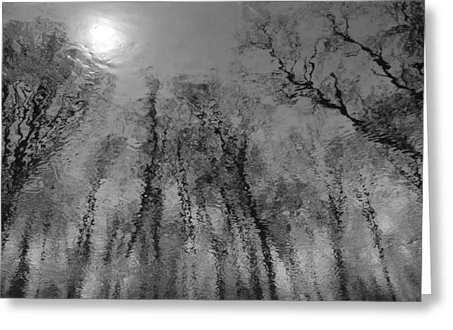 Reflections In Water 2 Greeting Card by Kathleen Scanlan