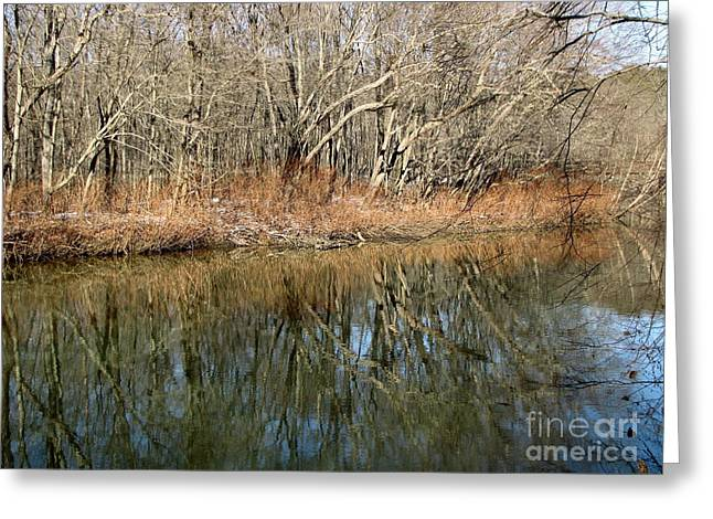 Greeting Card featuring the photograph Reflections by Melissa Stoudt