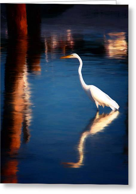 Reflections Greeting Card by Michael Pickett