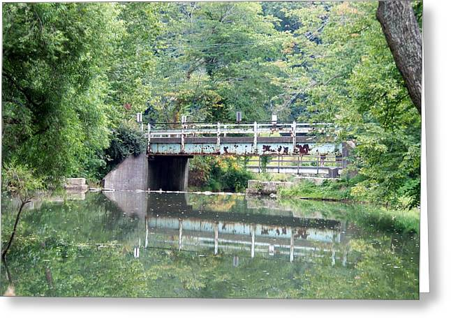 Reflections Of A Bridge Greeting Card by Adam L