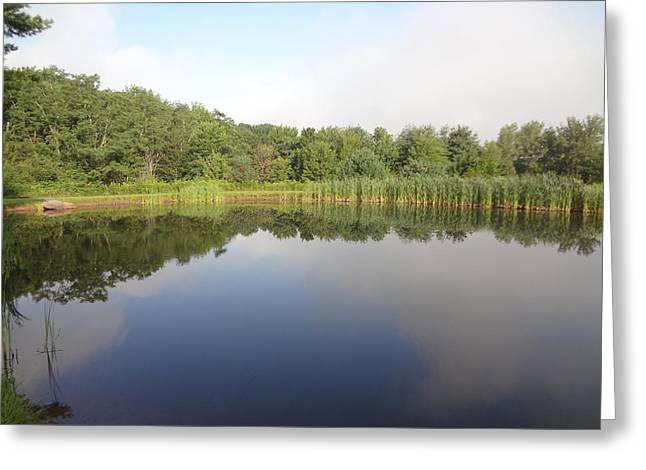Reflections Of A Still Pond Greeting Card by Michael Porchik