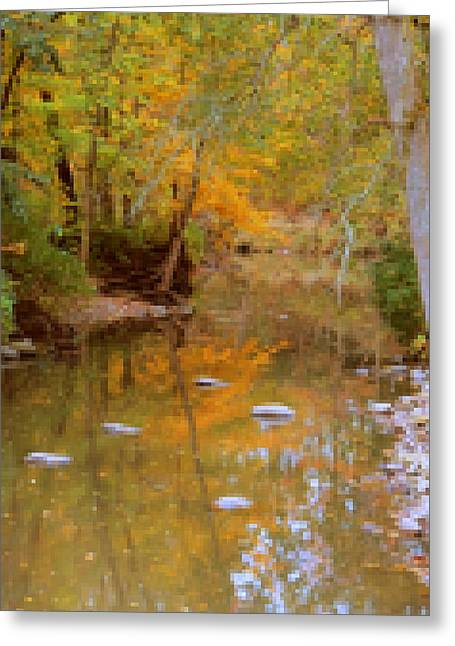 Reflections Of An Autumn Day Greeting Card by Kay Novy