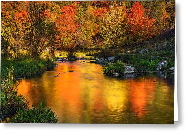 Reflections Of Autumn Greeting Card by Leland D Howard