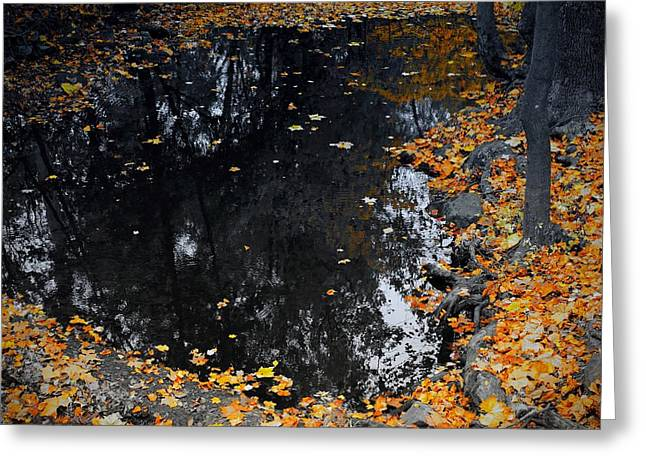 Greeting Card featuring the photograph Reflections Of Autumn by Photographic Arts And Design Studio