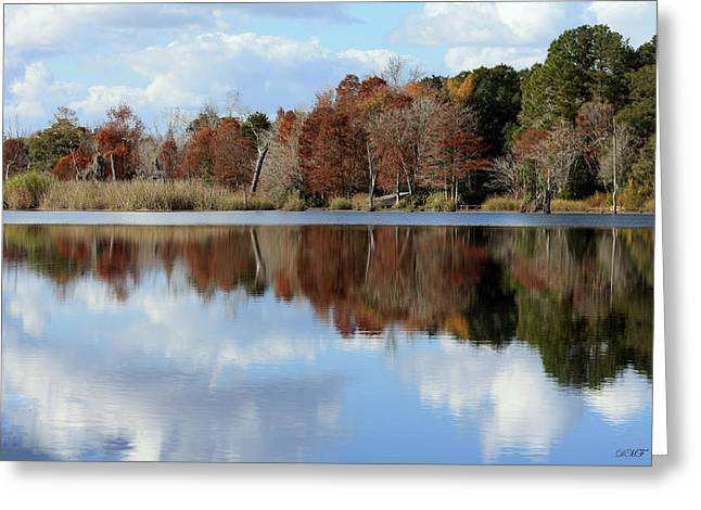 Greeting Card featuring the photograph Reflections Of Color by Debra Forand