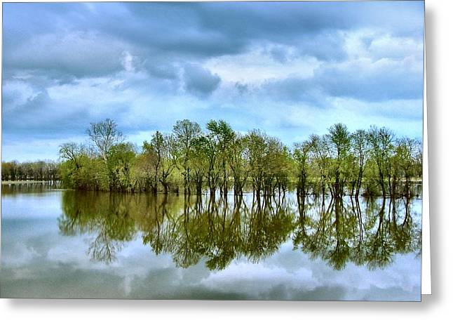 Reflections Of Spring Greeting Card by Julie Dant