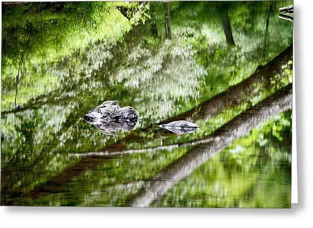 Reflections Of Van Campens Glen Greeting Card
