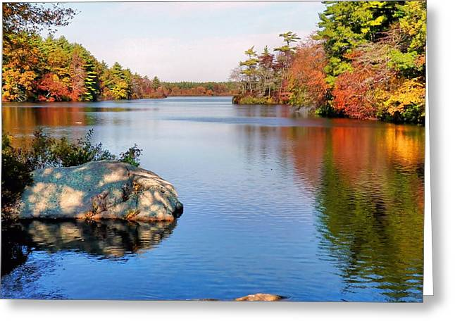 Greeting Card featuring the photograph Reflections On A Fall Day by Janice Drew