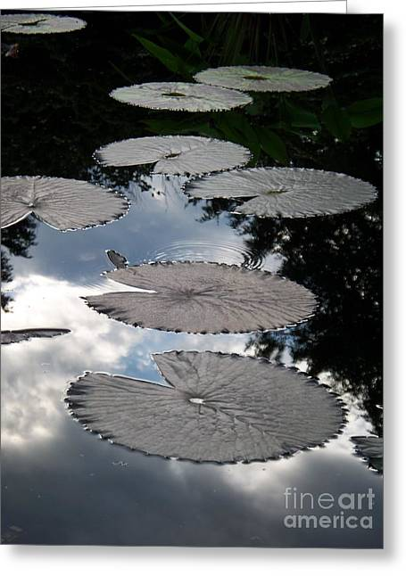 Reflections On A Lily Pond Monet Greeting Card by Eric  Schiabor