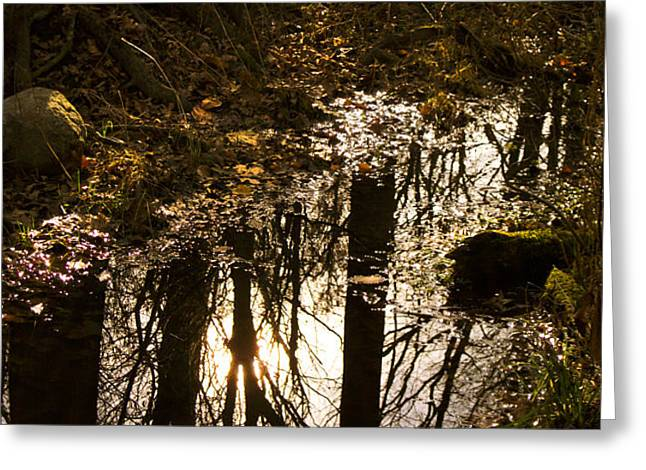 Reflections On An Autumn's Evening Greeting Card