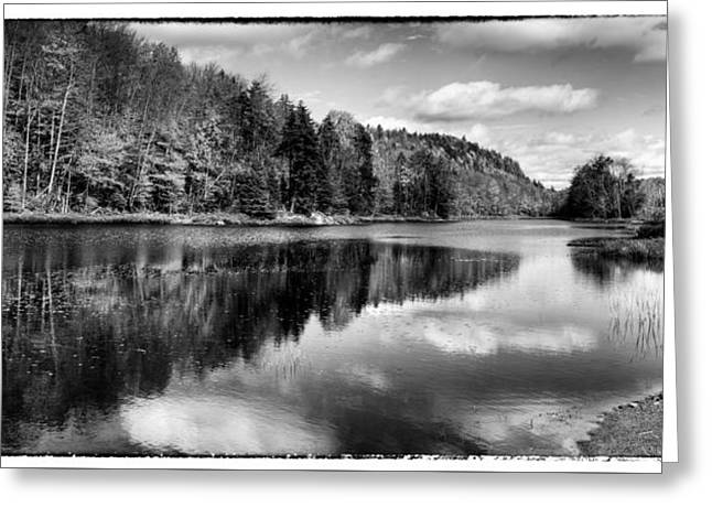 Reflections On Bald Mountain Pond Greeting Card by David Patterson