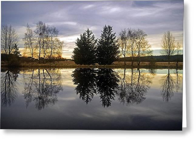 Reflections On Camano Island  Washington Greeting Card by Maralei Keith Nelson