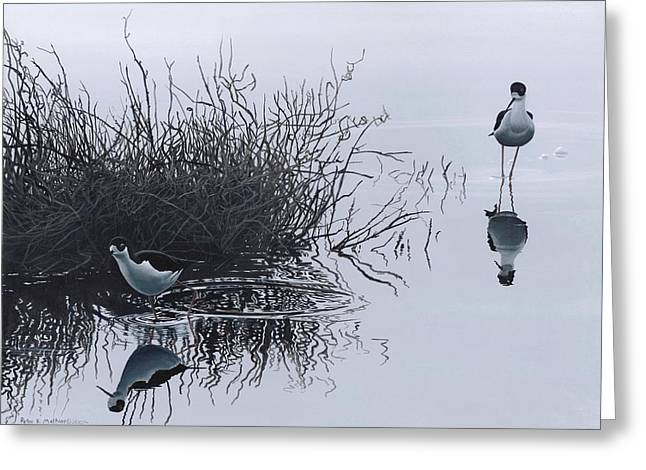 Reflections Greeting Card by Peter Mathios
