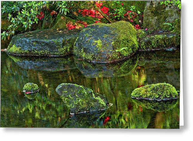 Reflections, Pond, Natural Garden Greeting Card by Michel Hersen