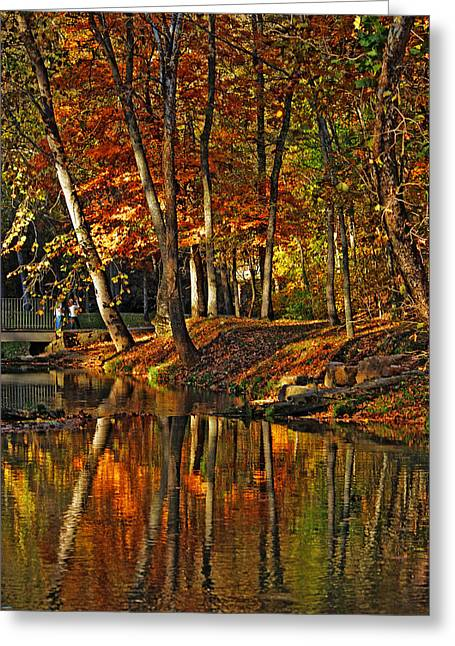 Reflections Greeting Card by Rowana Ray