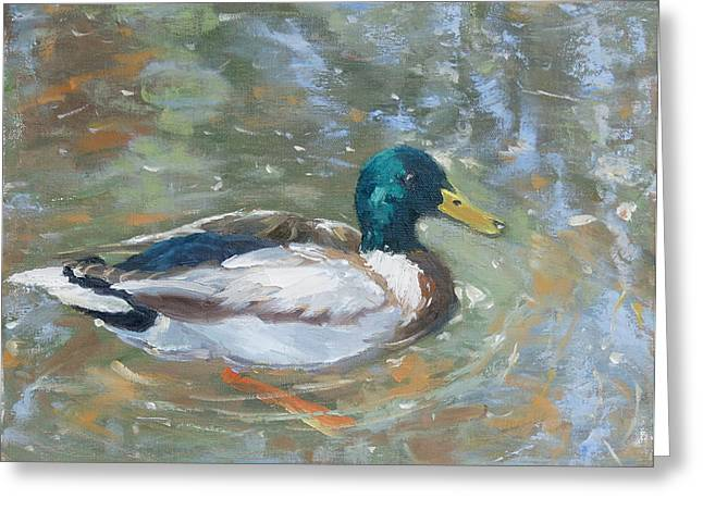 Reflections Greeting Card by Sandra Harris