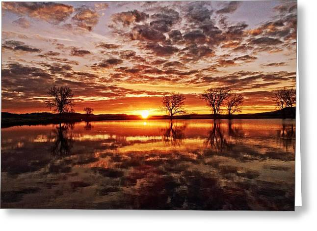 Reflective Dawn Greeting Card