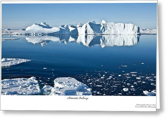 Reflective Icebergs Greeting Card by David Barringhaus