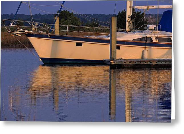 Greeting Card featuring the photograph Reflective Mood by Laura Ragland