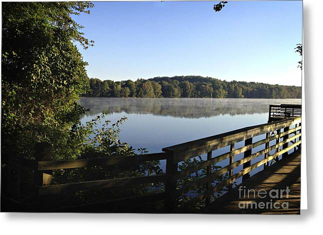 Reflective Morning Greeting Card by Nancy E Stein