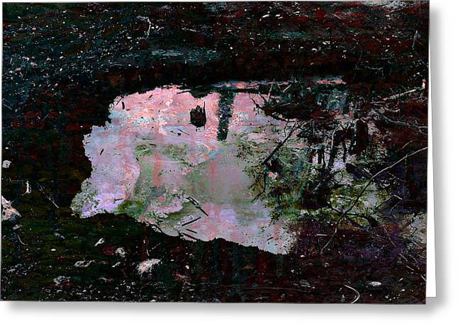 Reflective Skylight On A Small Pond Of Water # 1 Greeting Card by Miguel Conesa Osuna