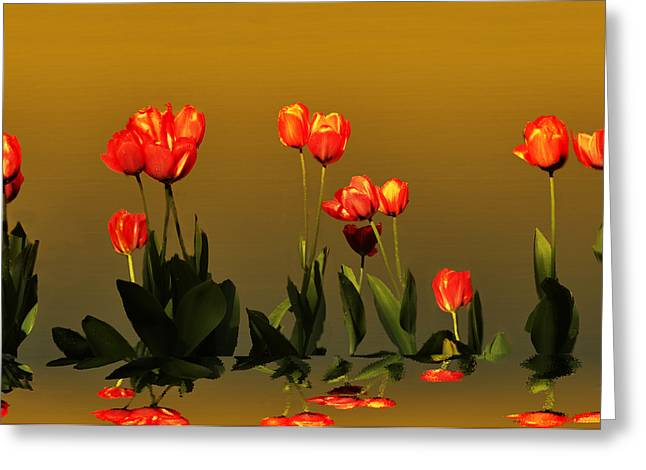 Reflective  Greeting Card by Steven Michael