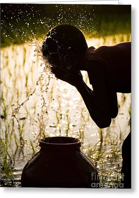 Refreshing Water Greeting Card by Tim Gainey