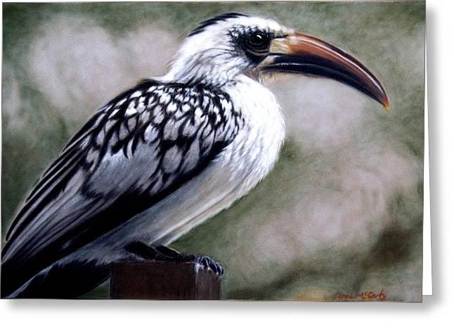Regal Hornbill Greeting Card
