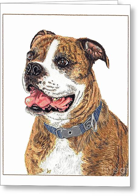 Greeting Card featuring the painting Reggie by Val Miller