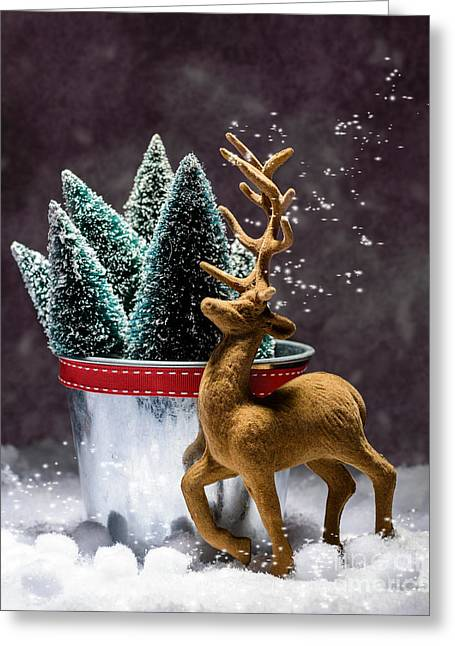 Reindeer At Christmas Greeting Card by Amanda Elwell
