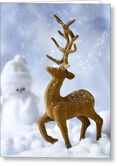 Reindeer In Snow Greeting Card by Amanda Elwell