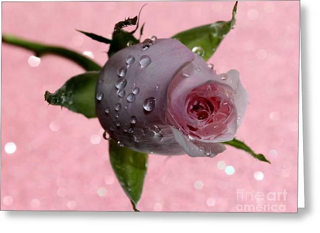 Rekindled Love Greeting Card