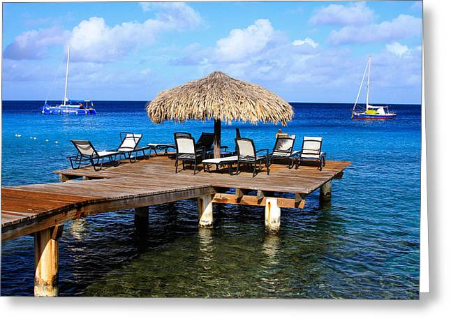 Greeting Card featuring the photograph Relax by Haren Images- Kriss Haren