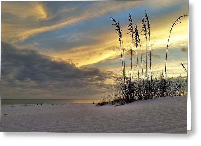 Relaxing On The Emerald Coast Greeting Card