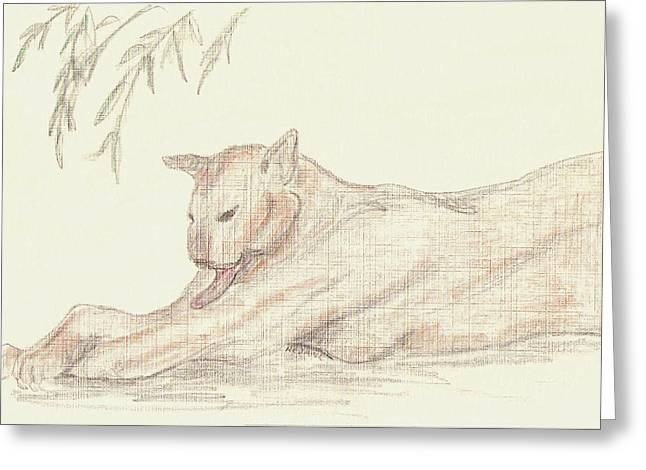 Relaxing Panther Greeting Card by Rosalie Scanlon