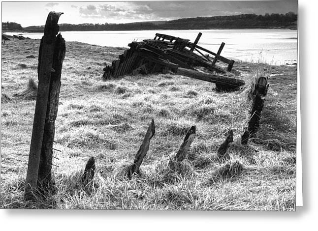 Remains Of The Severn Trow Severn Collier At Purton Greeting Card by Rachel Down