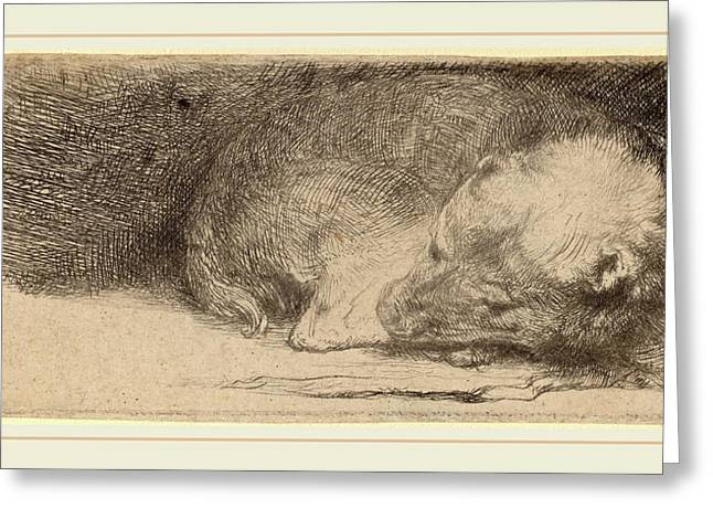 Rembrandt Van Rijn Dutch, 1606-1669, Sleeping Puppy Greeting Card by Litz Collection