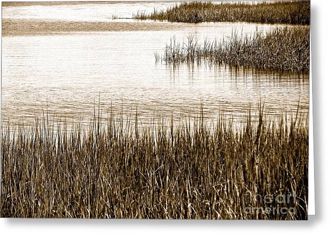 Remember The Silence Greeting Card by Q's House of Art ArtandFinePhotography