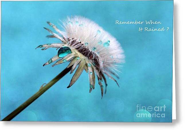 Remember When It Rained? Greeting Card by Krissy Katsimbras