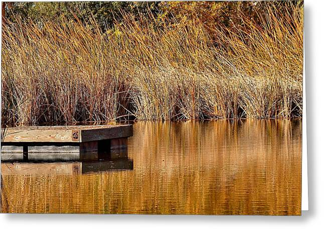 Greeting Card featuring the photograph Remembering Summer Times by Elaine Malott