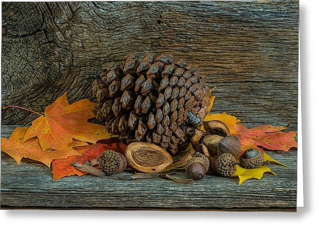 Remnants Of Fall Greeting Card